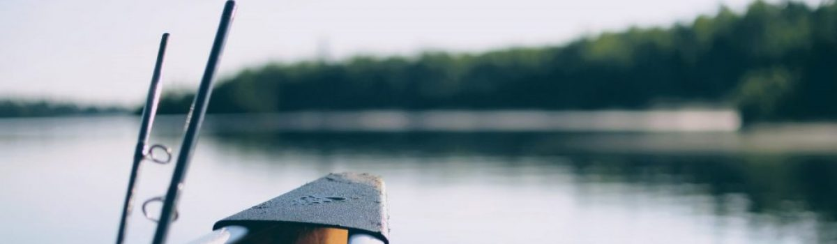 4 Local Minnesota Lakes with the Best Fishing